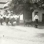 1931 srpen - Obžínky - S2120071