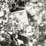 1933 - Agrární slavnosti - S2120147