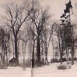 1942: Park