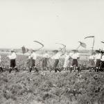 1931 srpen - Obžínky - S2120035