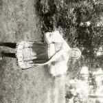 1933 - Agrární slavnosti - S2120165