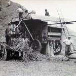 1920-50?: Zemědělství, JZD_6