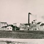 1930-39: Cukrovar